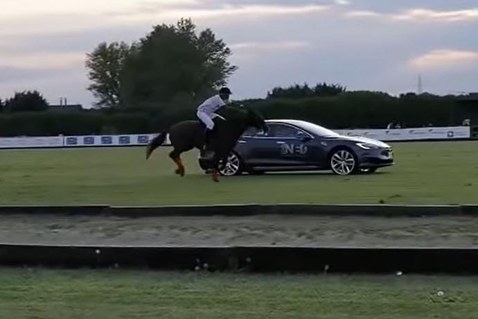Tesla Model S vs A Horse: Most interesting drag race ever